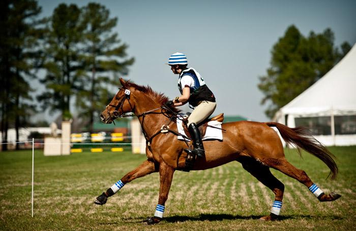 Horse Trials | Andrew Craft